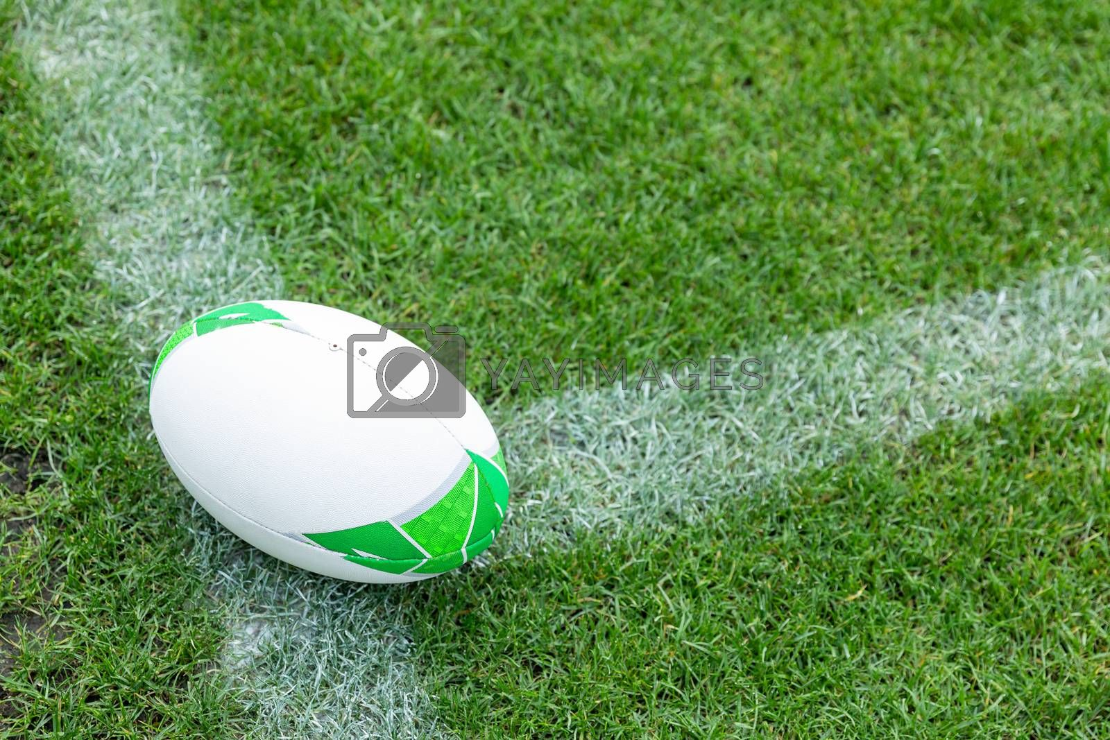 Close-up of Rugby ball on a grass in the stadium