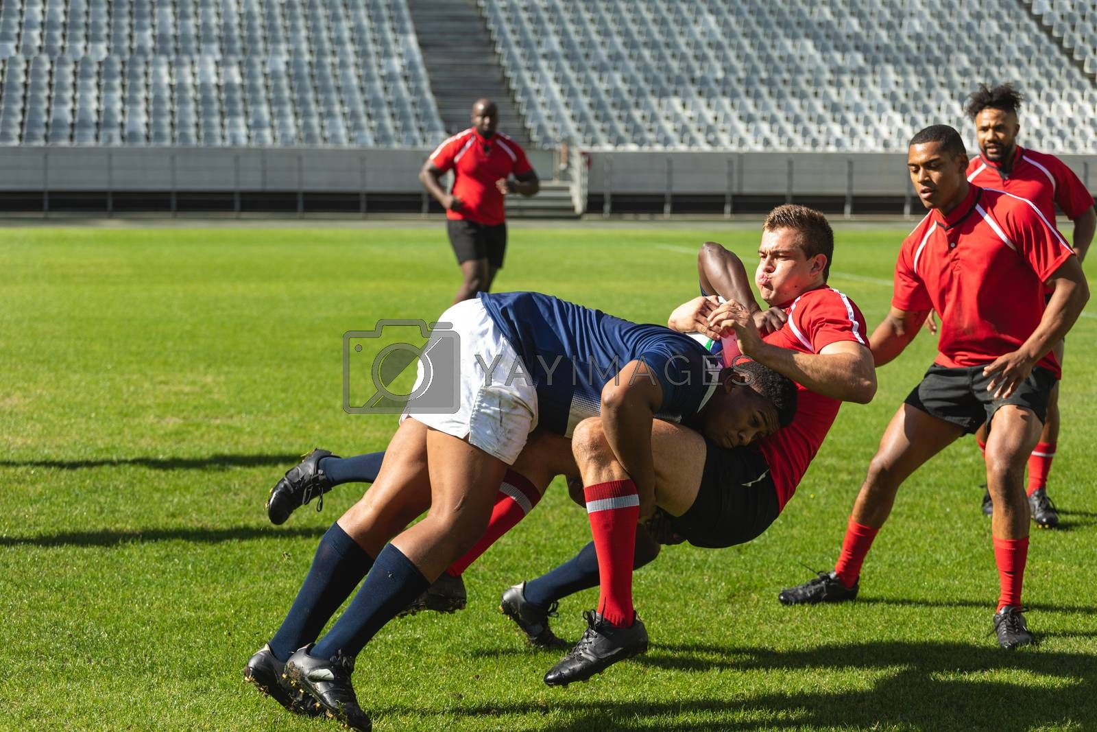 Front View of two African American male rugby players in blue tackling down Caucasian male player in red while diverse rugby players run behind them in stadium on sunny day.