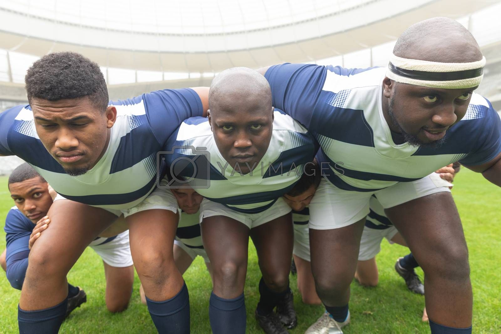 Front view of group of diverse male rugby player ready to play rugby match in stadium