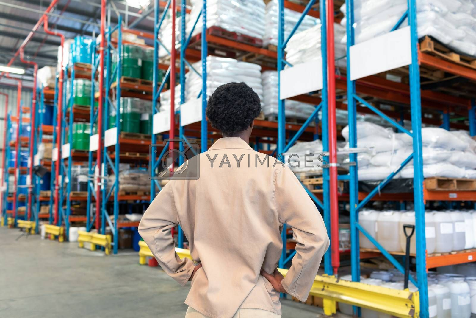 Rear view of young African-american female staff standing with hands on hip in warehouse. This is a freight transportation and distribution warehouse. Industrial and industrial workers concept