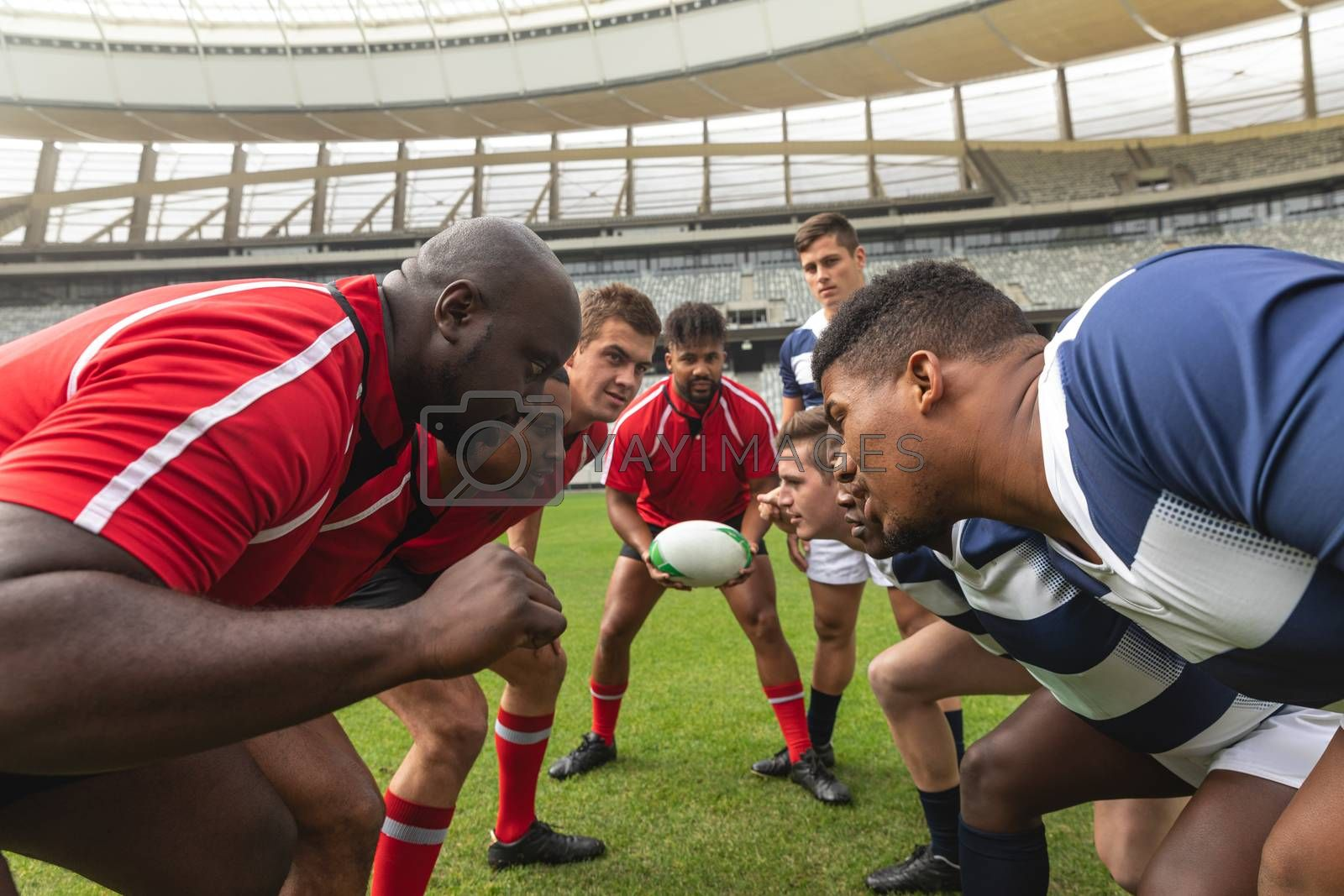 Side view of diverse male rugby players looking into the eyes of the competitors.