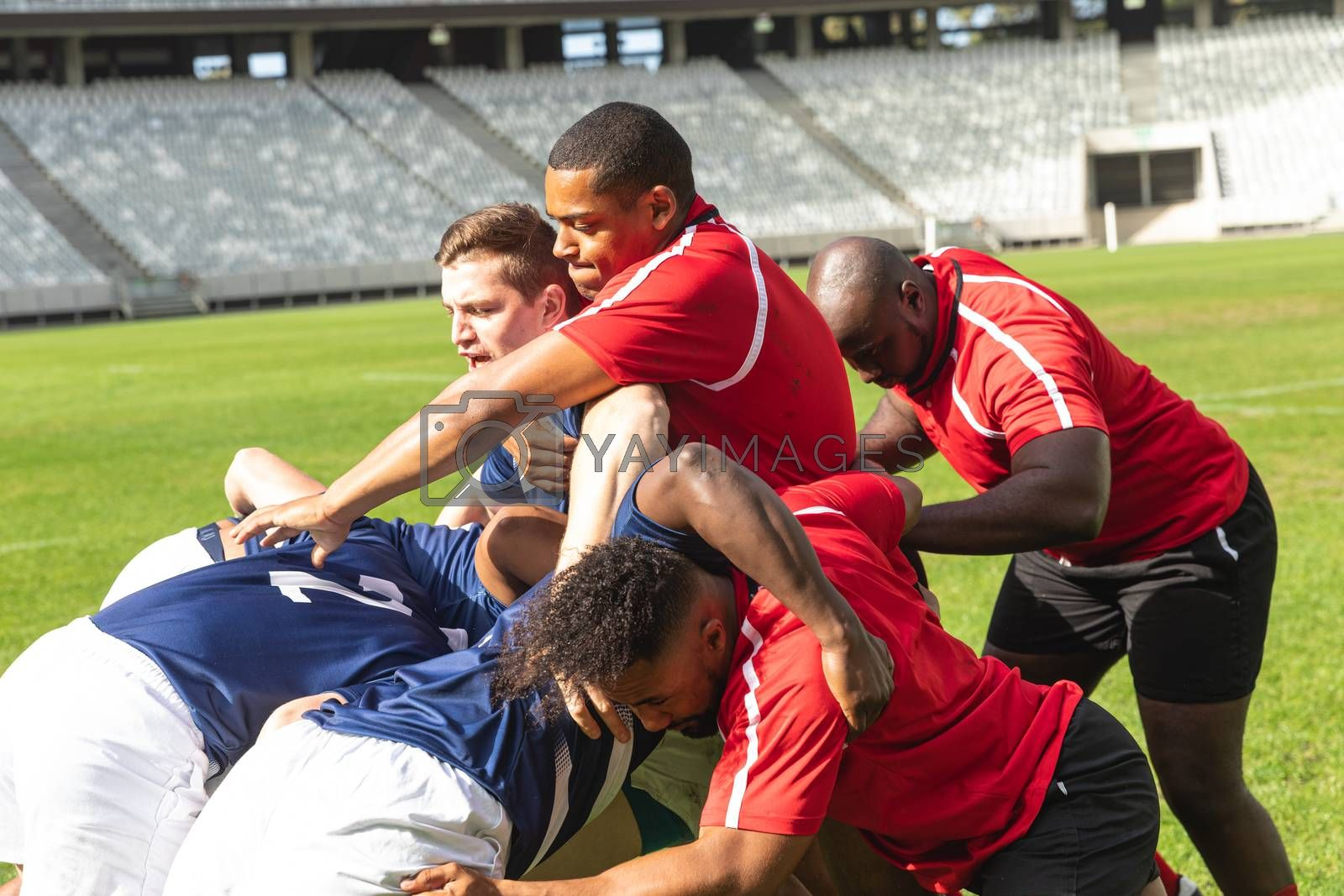 Front view of group of diverse rugby players trying to get the rugby ball from each other in stadium on a sunny day.
