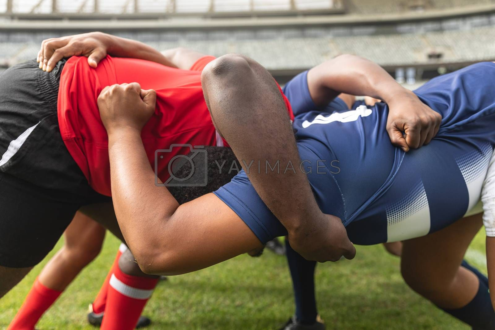 Side view close up of diverse male rugby players playing rugby match in stadium.