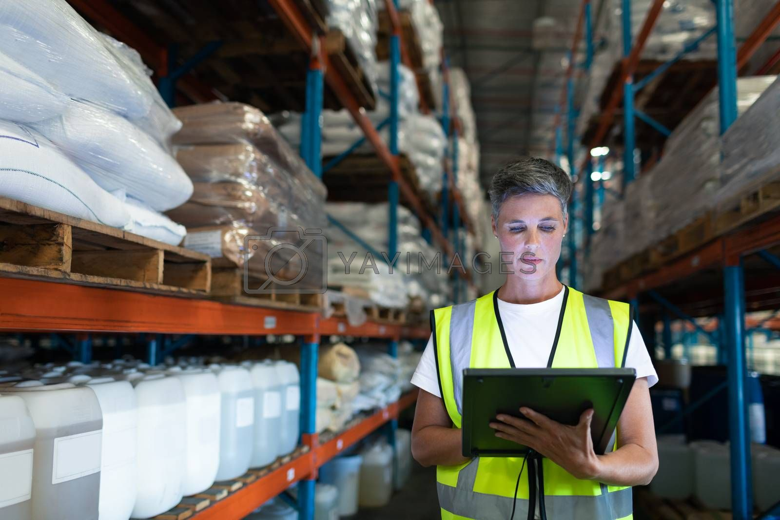Front view of Caucasian Attentive female staff using digital tablet in warehouse. This is a freight transportation and distribution warehouse. Industrial and industrial workers concept