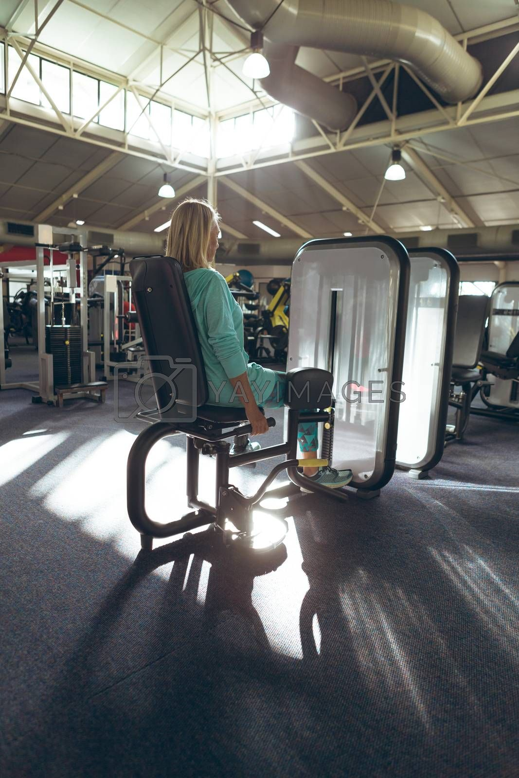 Rear view of disabled active senior Caucasian woman with amputee leg exercising with leg curl machine in fitness studio. Strong active senior female amputee training and working out