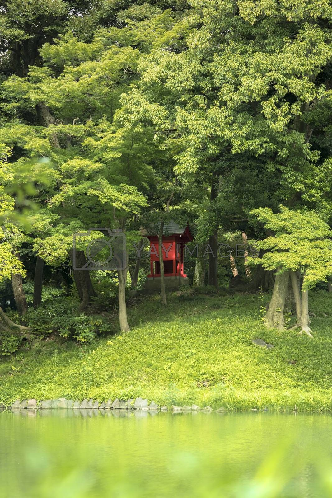 Small Shrine Vermilion Red Shinto located on the Osensui Lake islet of Koishikawa Korakuen Park in Bunkyo Ward, Tokyo. This small, heavily forested island is an evocation of the mythical Mount Horai very important in Chinese mythology.