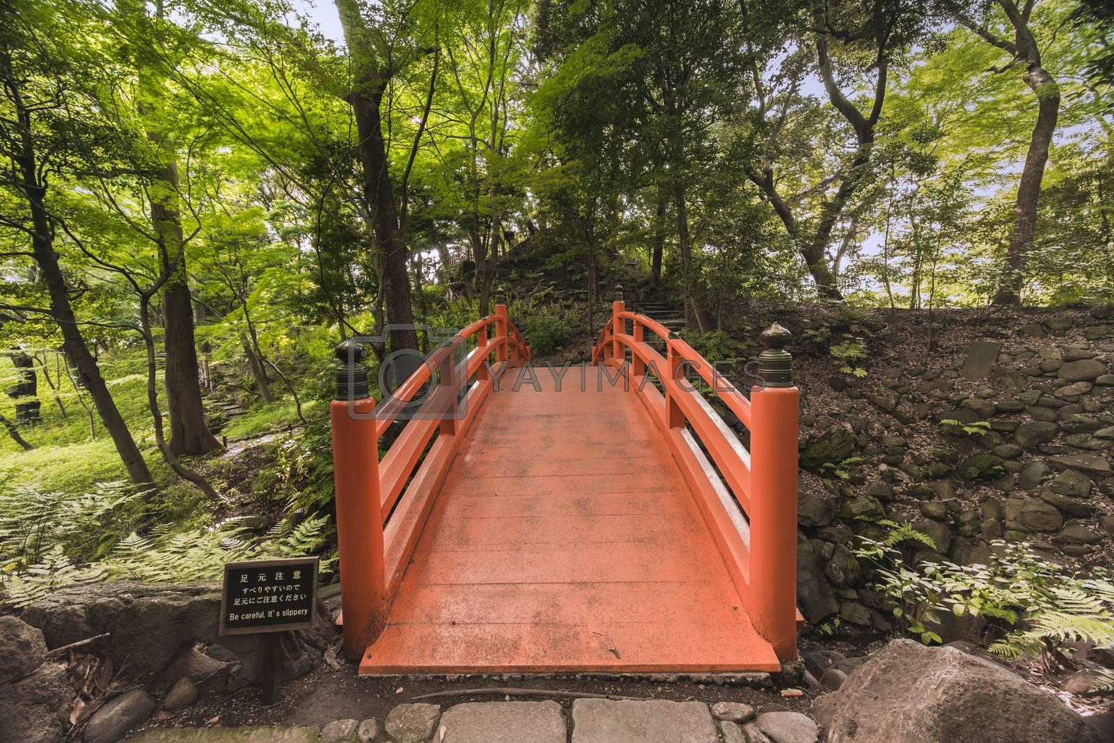 Japanese vermilion Tsuten bridge surrounded by maples and cherry trees in the forest of Koishikawa Korakuen Park.