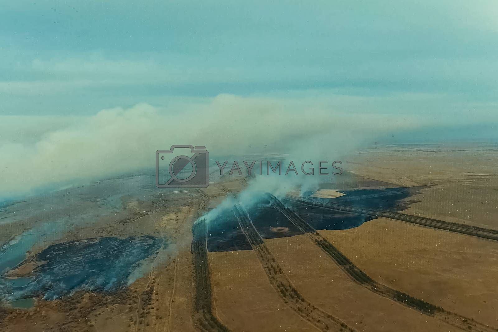 tundra fire. Burning dry grass and peat bogs, fire and smoke in the tundra.