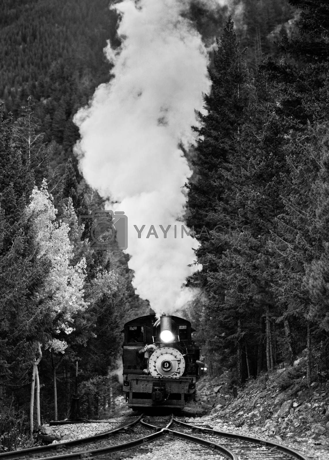The Loop's vintage shay engine pulls a train uphill in Georgetown, Colorado.