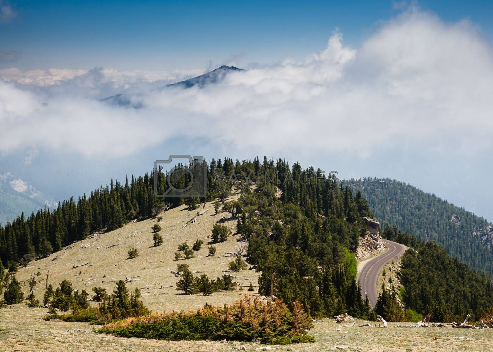 Winding road leading to the top of a mountain in Colorado.