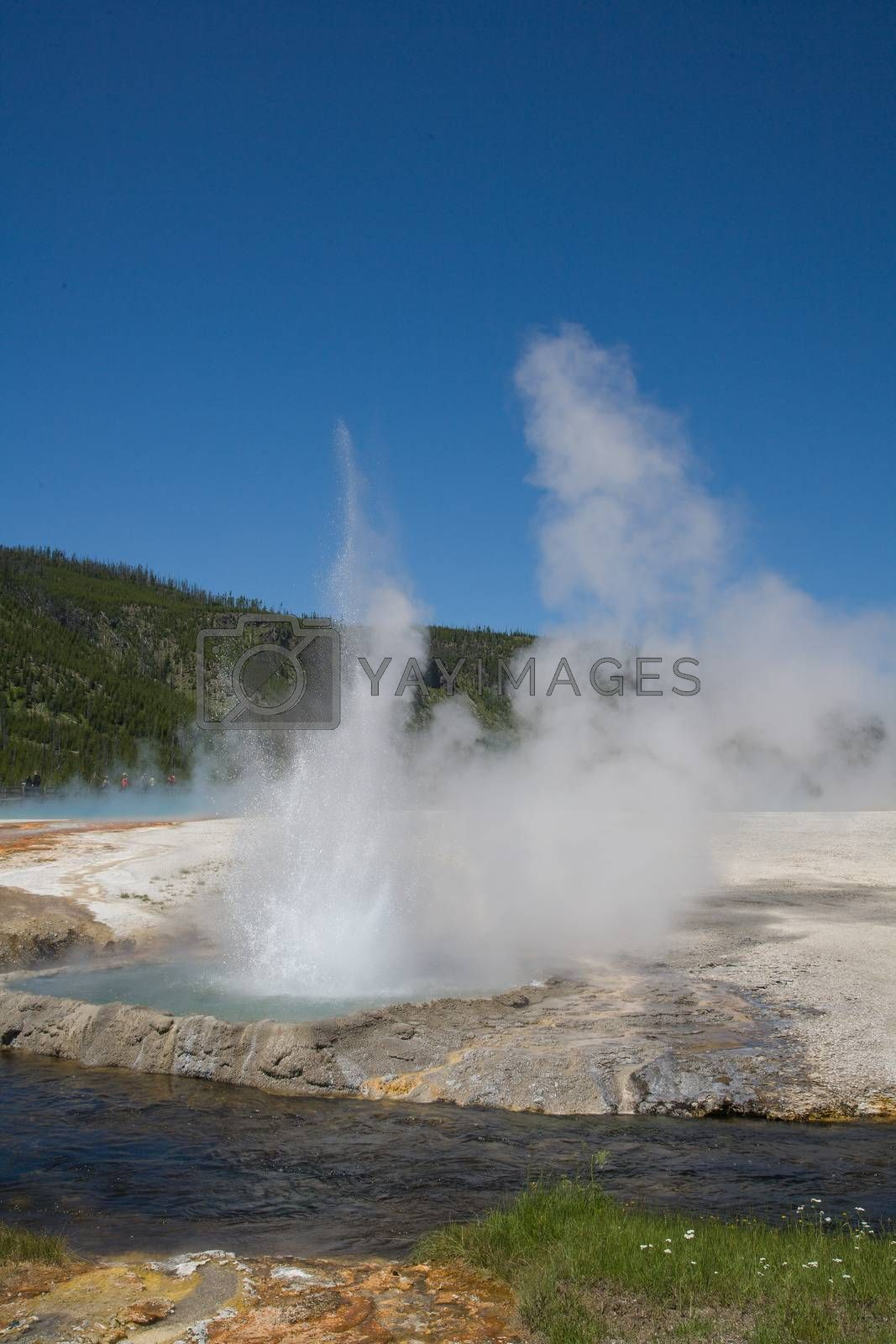 Yellowstone National Park in Wyoming - Geothermal Landscape Features