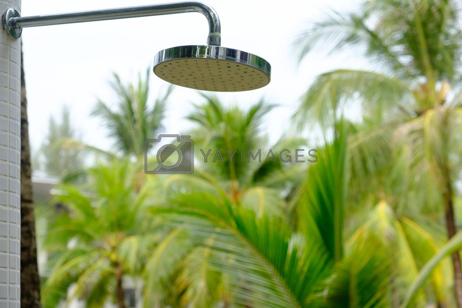 Close-up of Detail of a water shower head on seashore. Outdoor shower palm trees blurry background.