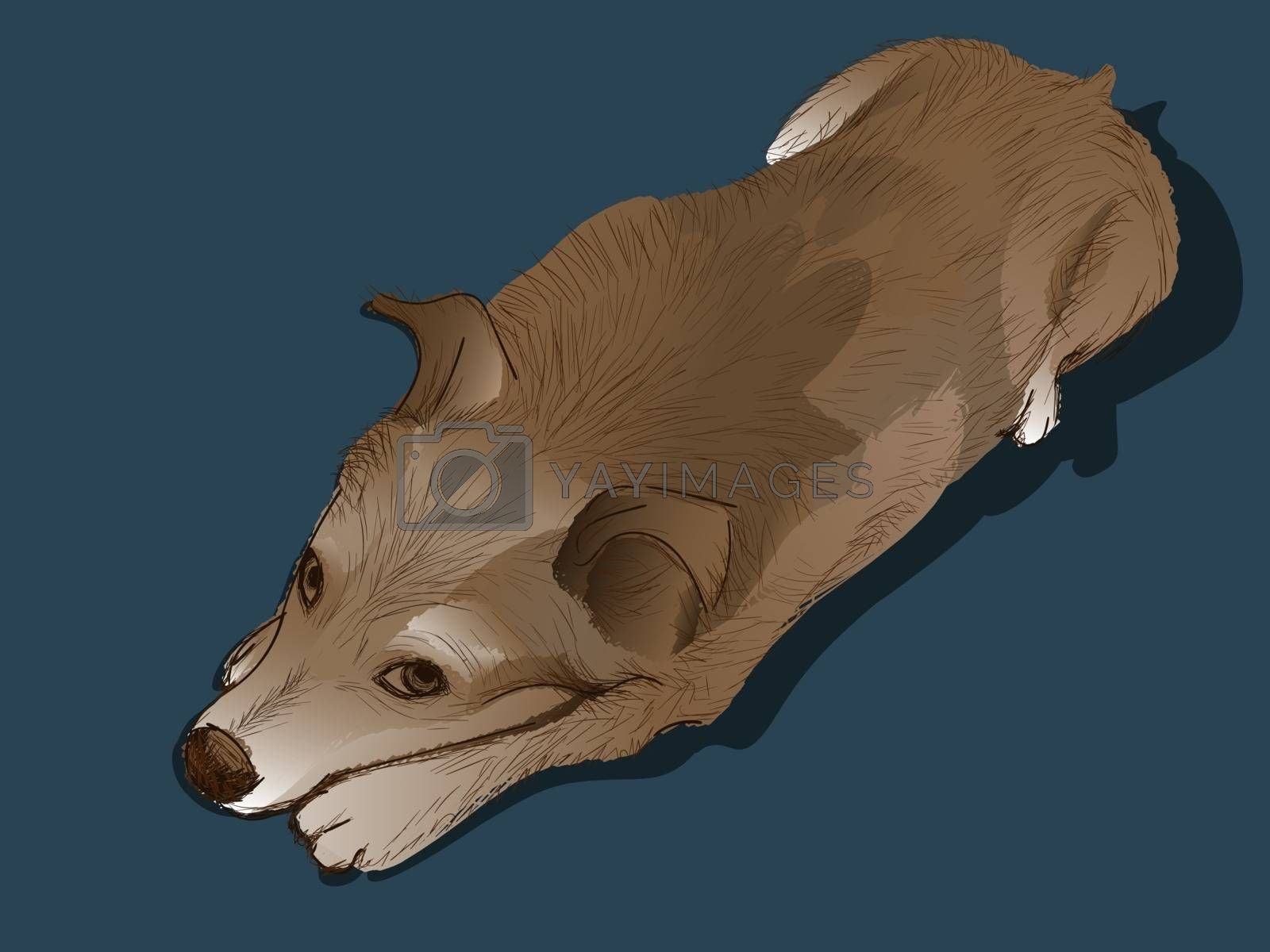 Cute realistic ginger dog lying on dark blue background and looking up