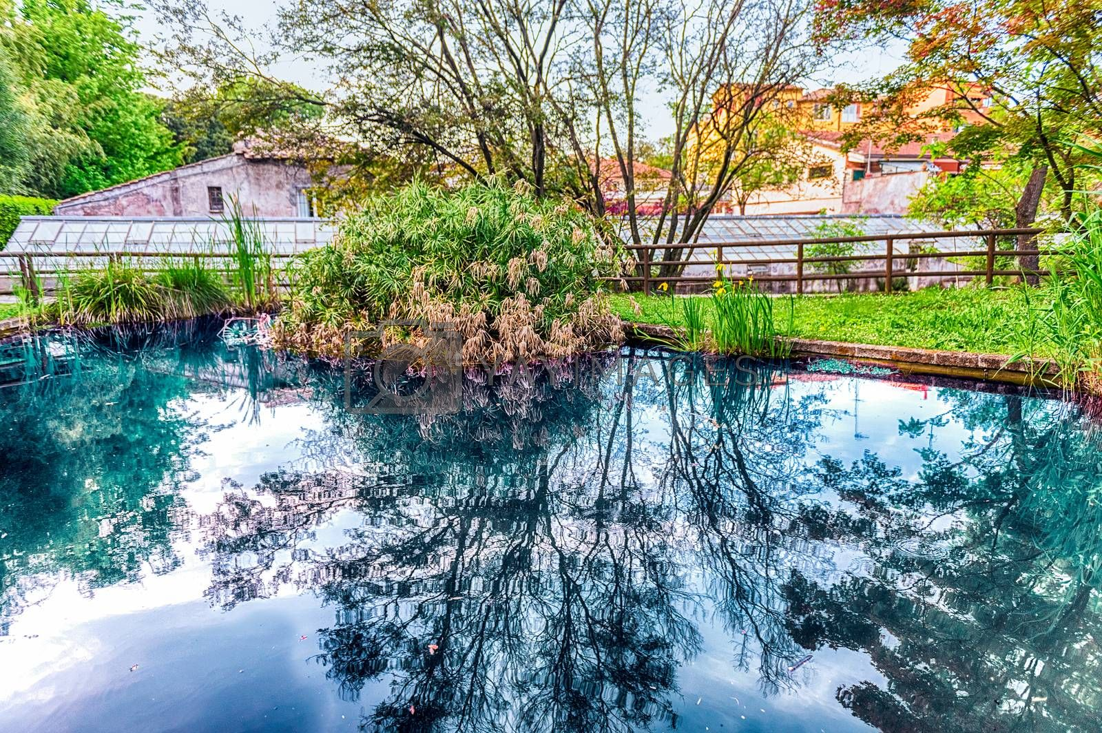 Idillic pond with beautiful reflections inside a public park in Rome, Italy