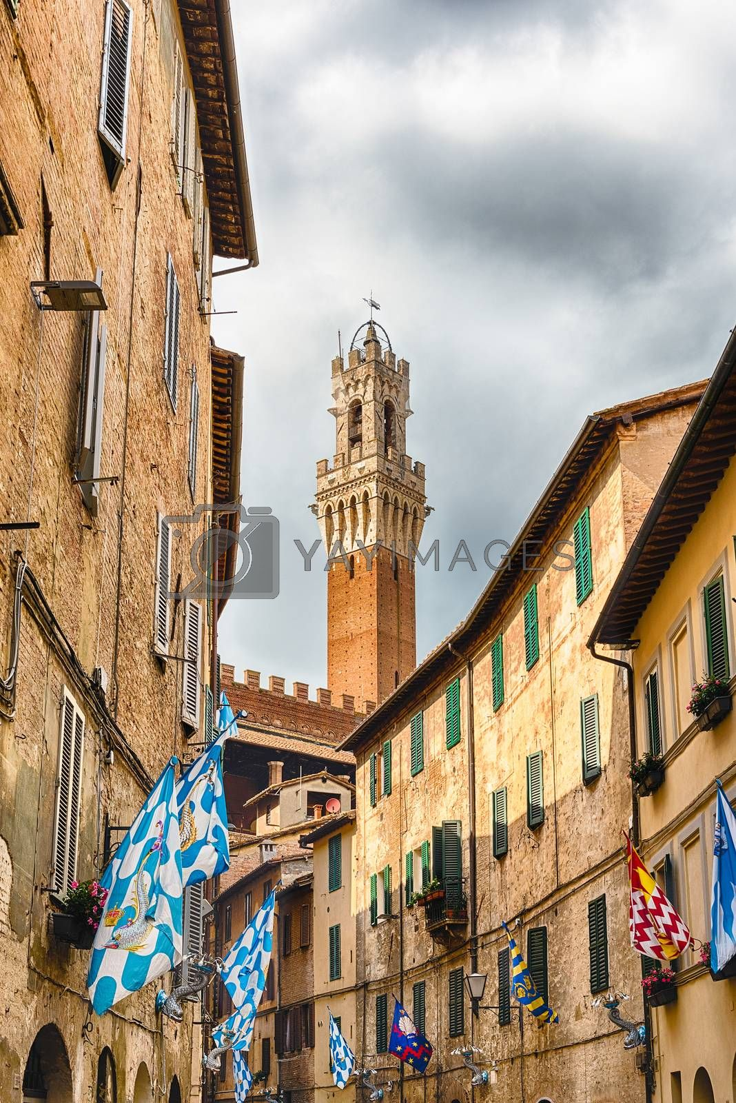 Walking in the picturesque streets in the medieval city centre of Siena, one of the nation's most visited tourist attractions in Italy