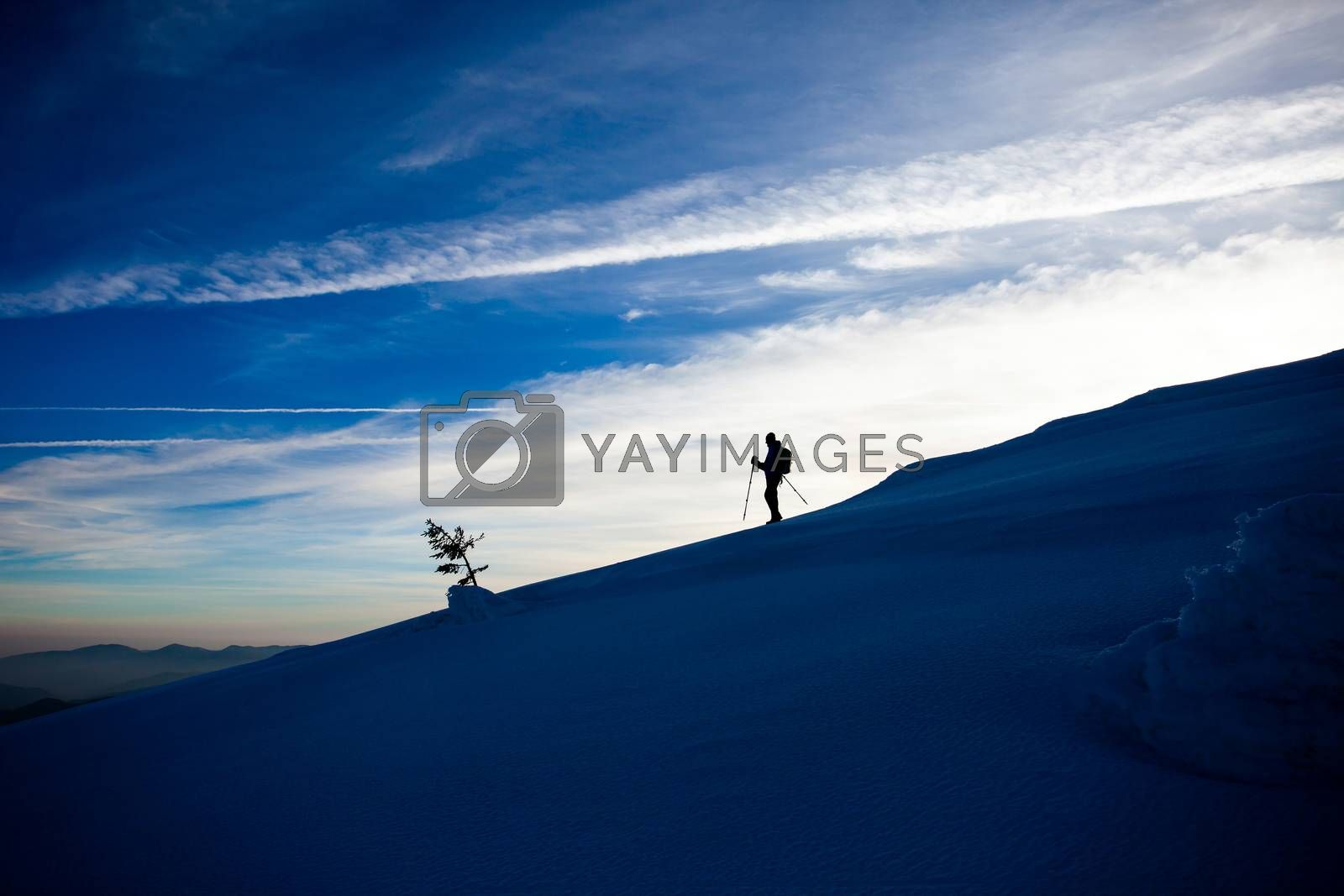 Hiker silhouette at dawn on Mount Ciucas trail in winter, part of Romanian Carpathian Range