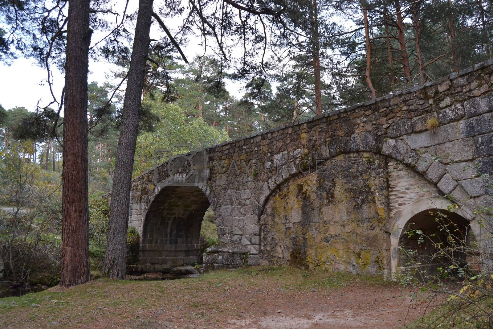Old bridge made of stone on a forest path