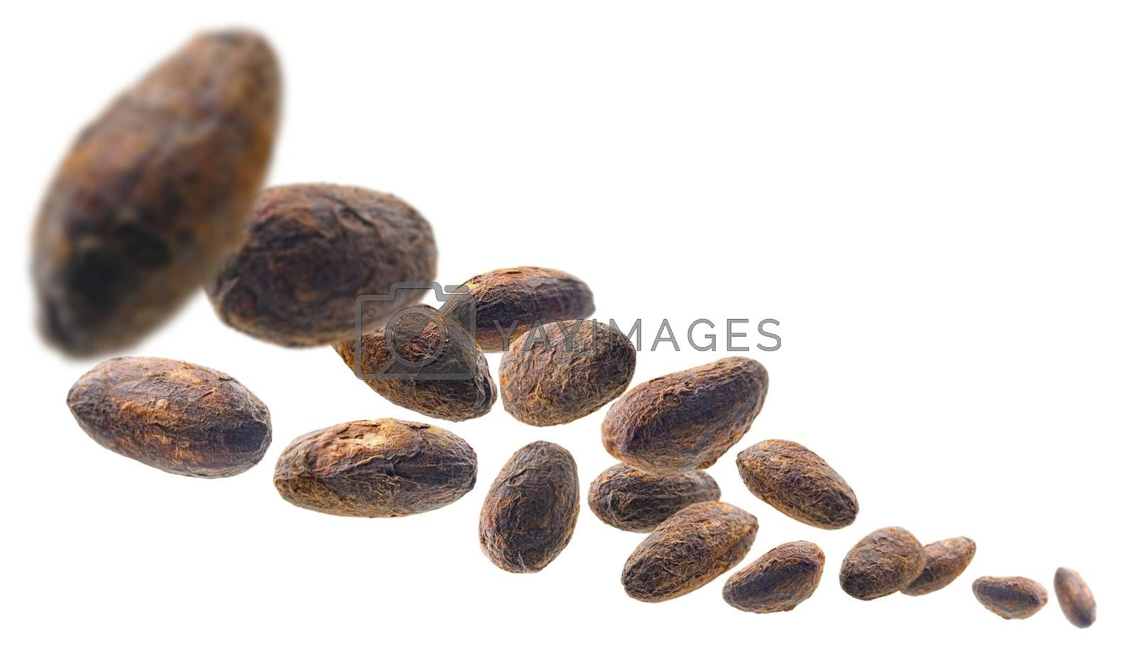 Cocoa beans levitate on a white background.