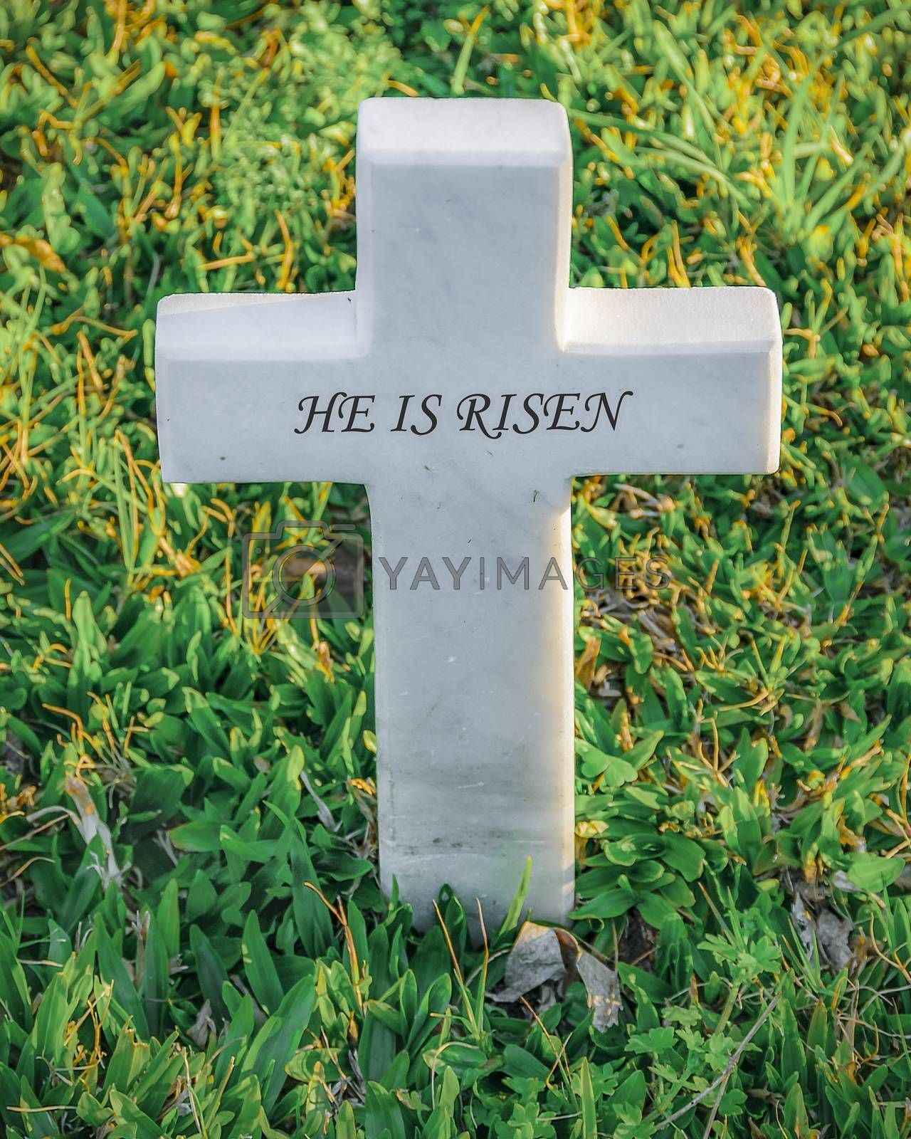 Easter or memorial concept  small cross with he is risen text surrounded by leaves background