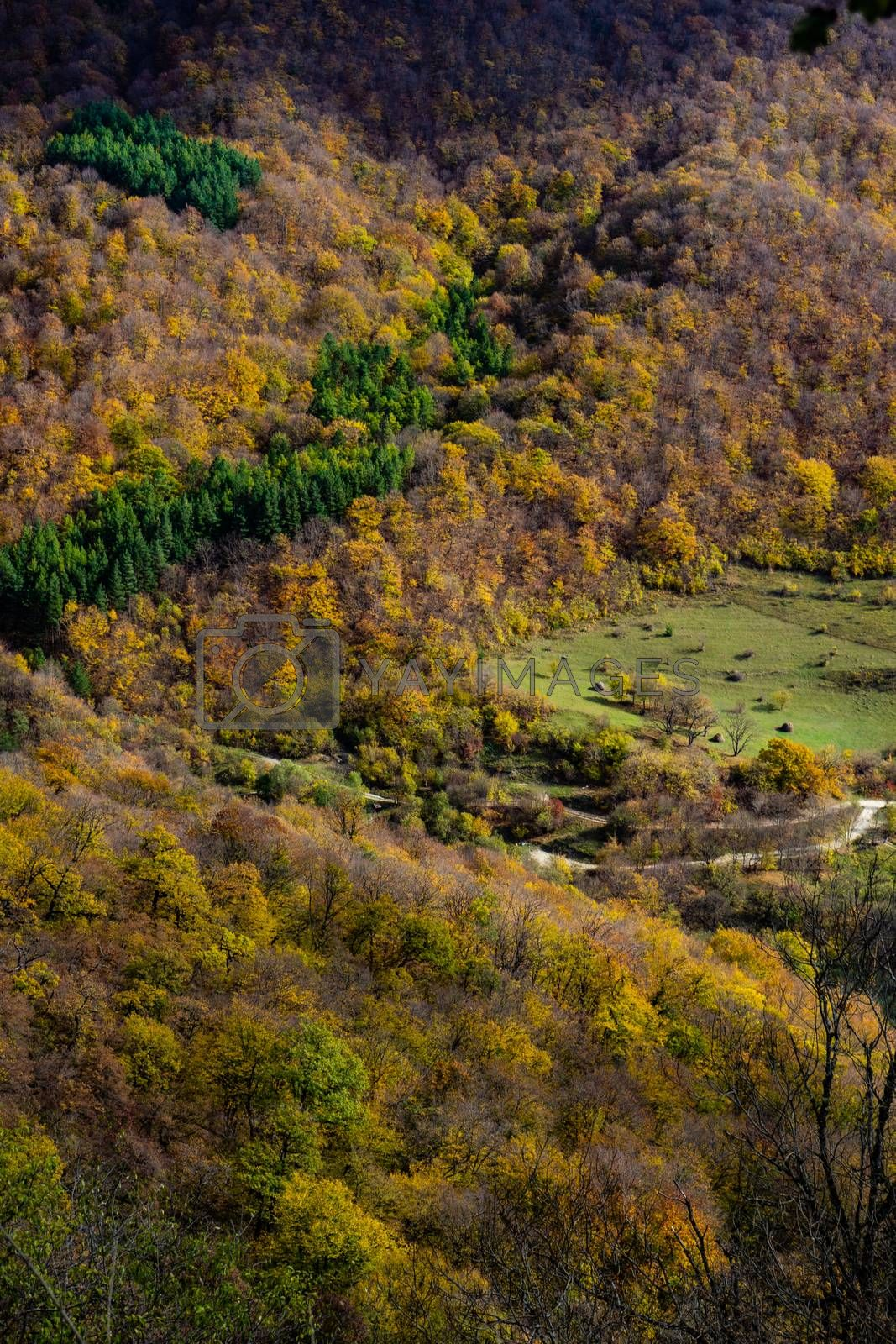 Caucasus mountain landscape in fall time in Georgia
