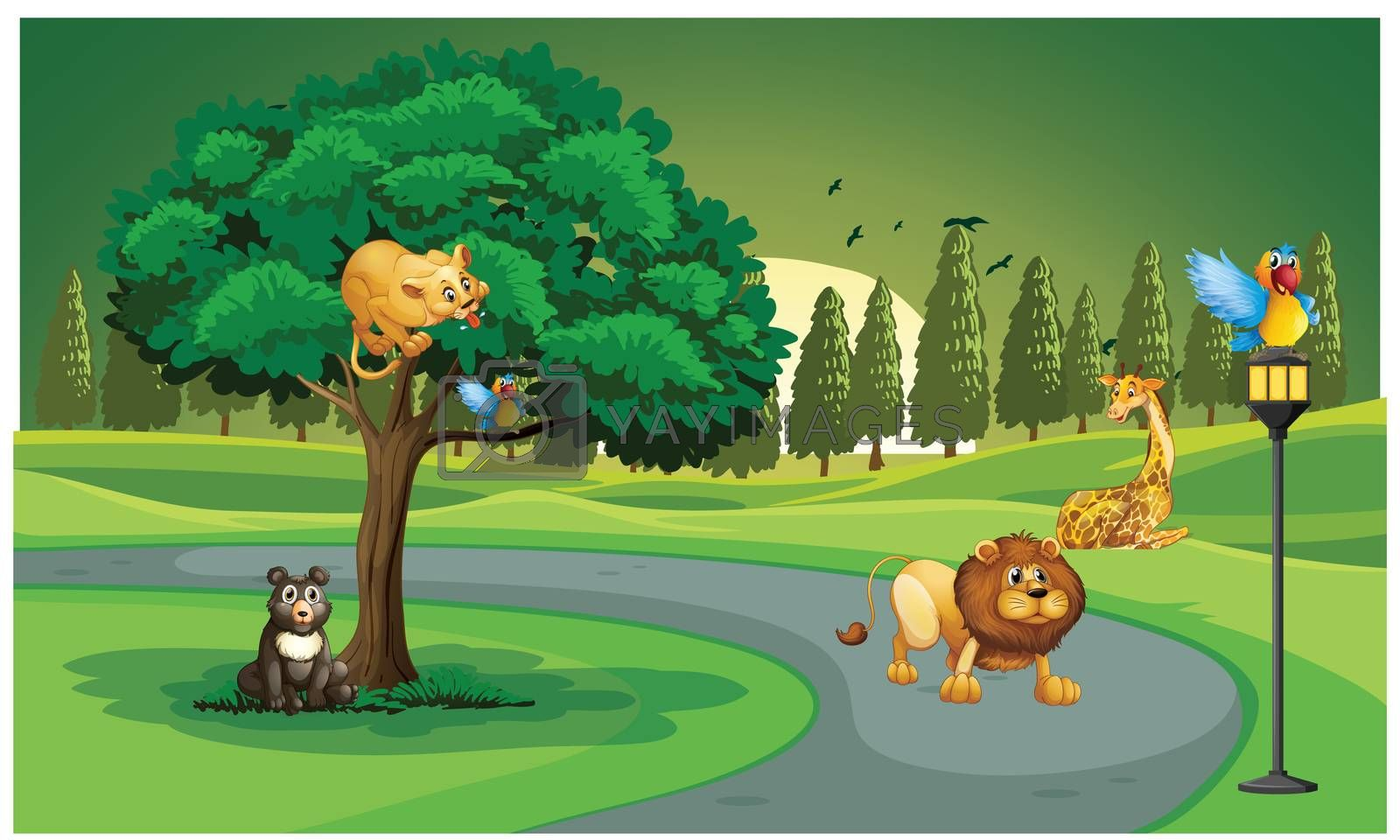 animals are in the jungle