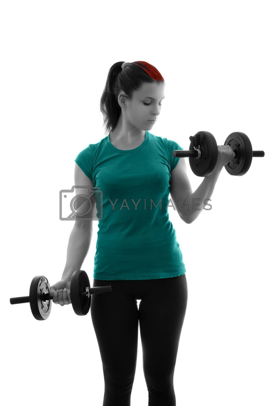 Fit attractive young woman doing dumbbell concentration curls, backlit silhouette studio shot isolated on white background. Fitness and healthy lifestyle concept. Young woman exercising with dumbbells.