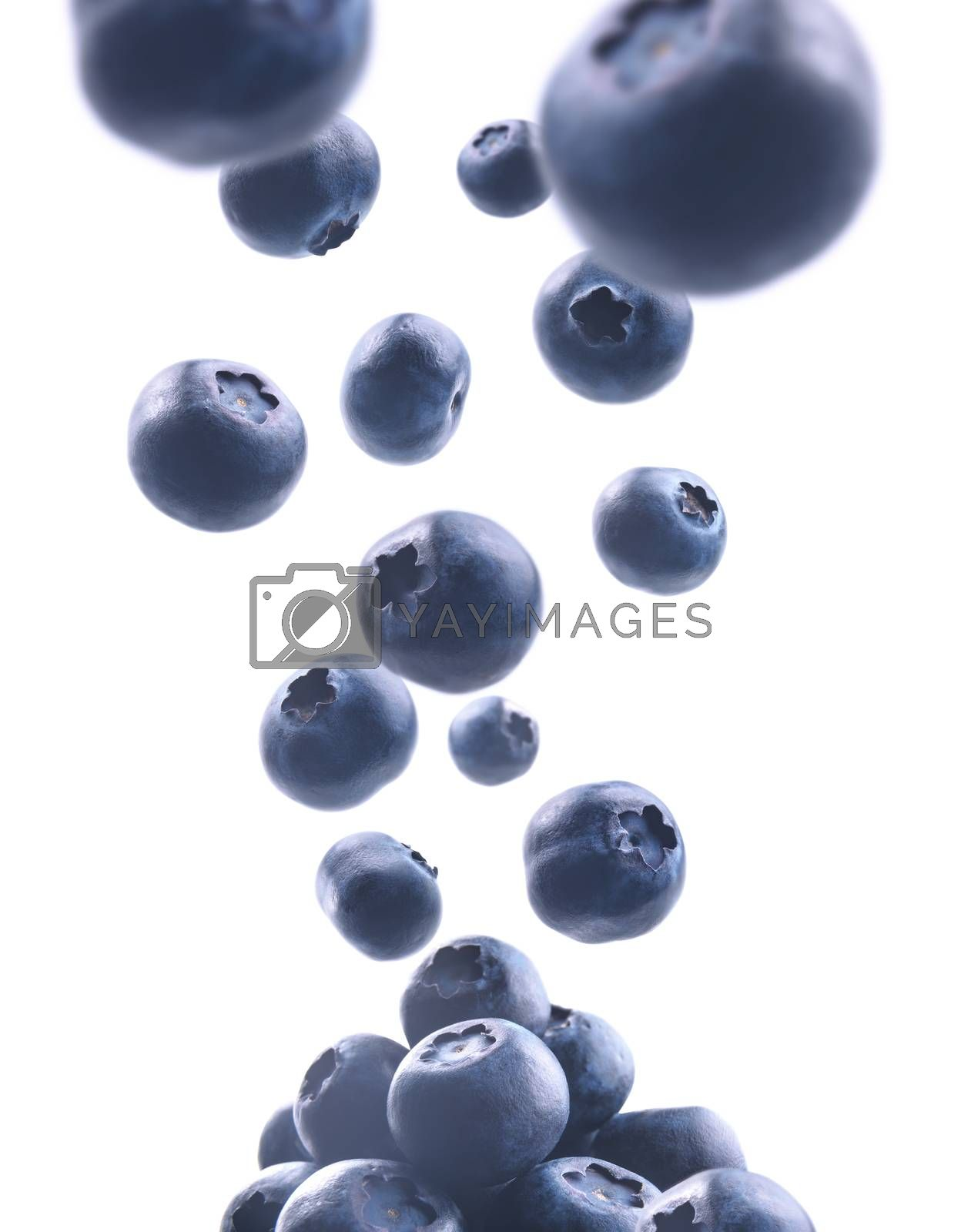 Ripe blueberries levitate on a white background by butenkow