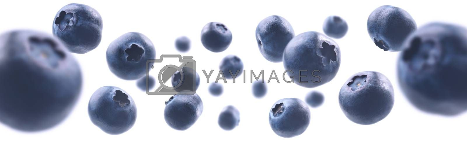 Ripe blueberries levitate on a white background.