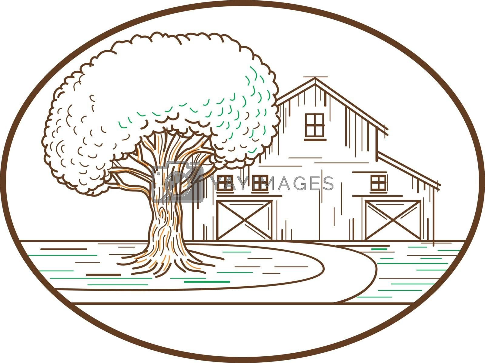 Mono line illustration of an American farm barn house with oak tree in front set inside oval shape done in monoline style.