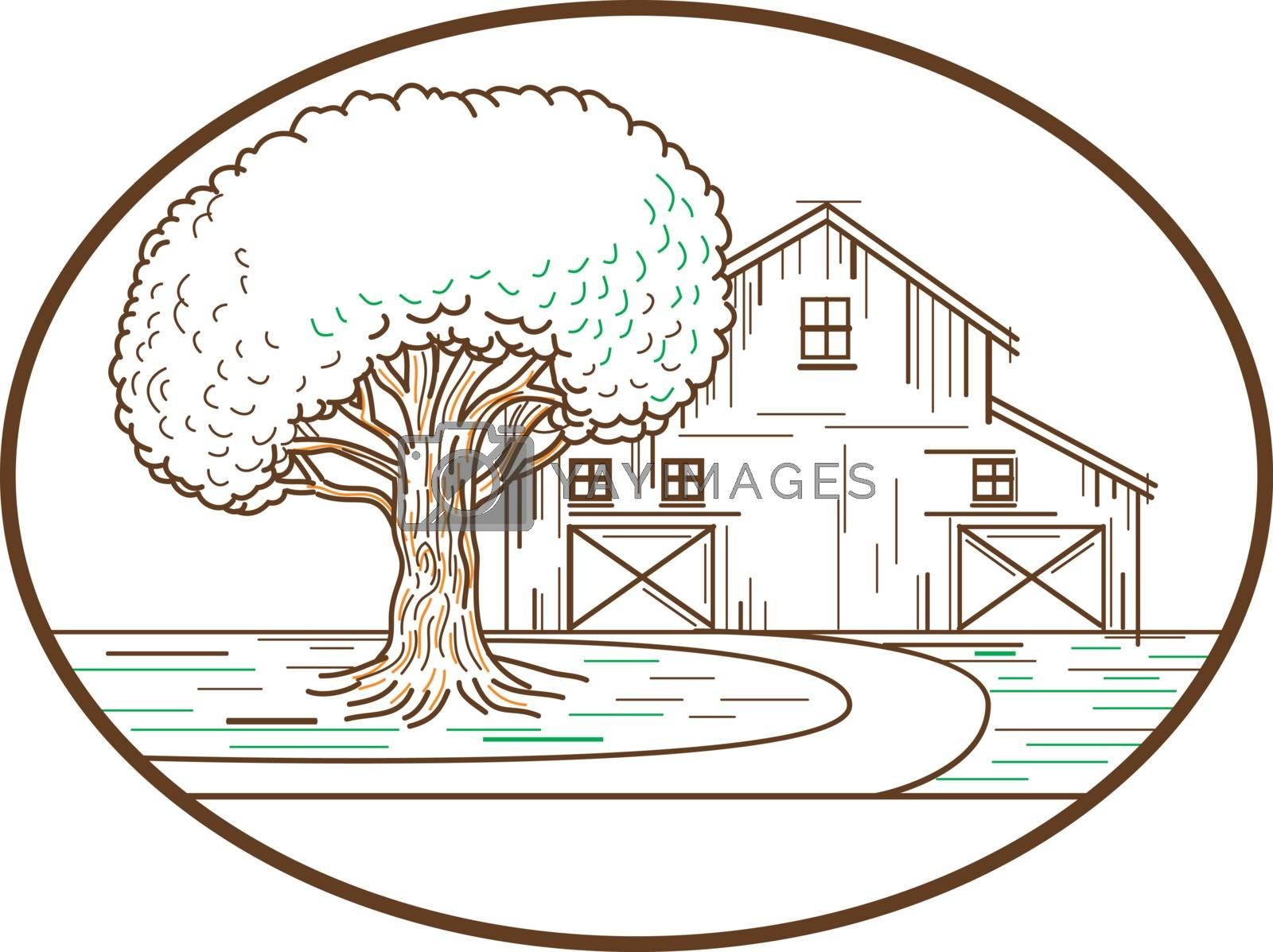 American Barn Oak Tree Mono Line Oval by patrimonio