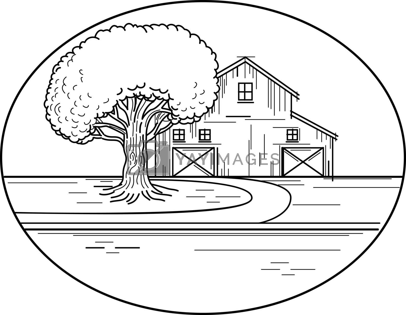 Mono line illustration of an American farm house or barn with oak tree on the side and road leading up to it set inside oval shape   done in monoline style.