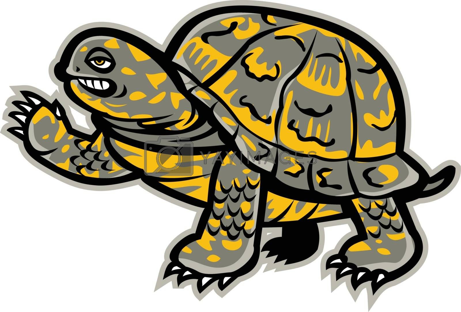 Mascot icon illustration of an eastern box turtle or land turtle, waving viewed from side on isolated background in retro style.