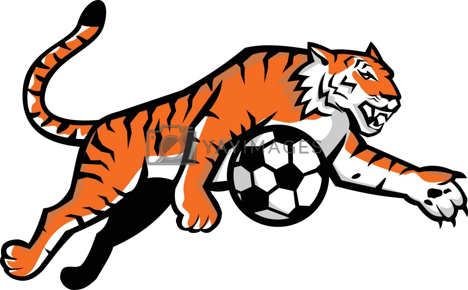 Mascot icon illustration of a tiger running, jumping, dribbling soccer football ball viewed from side  on isolated background in retro style.