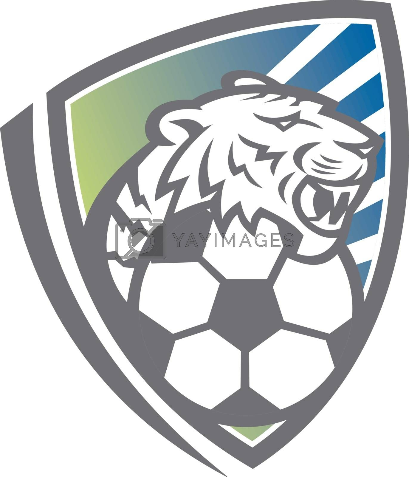 Royalty free image of Tiger Soccer Ball Shield by patrimonio
