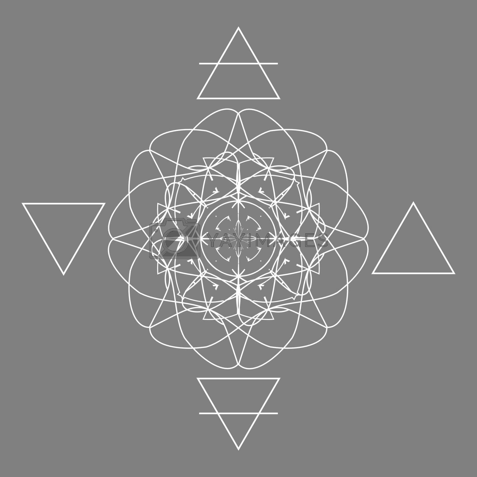 Four nature elements scheme with contour white triangles and abstract flower on grey background