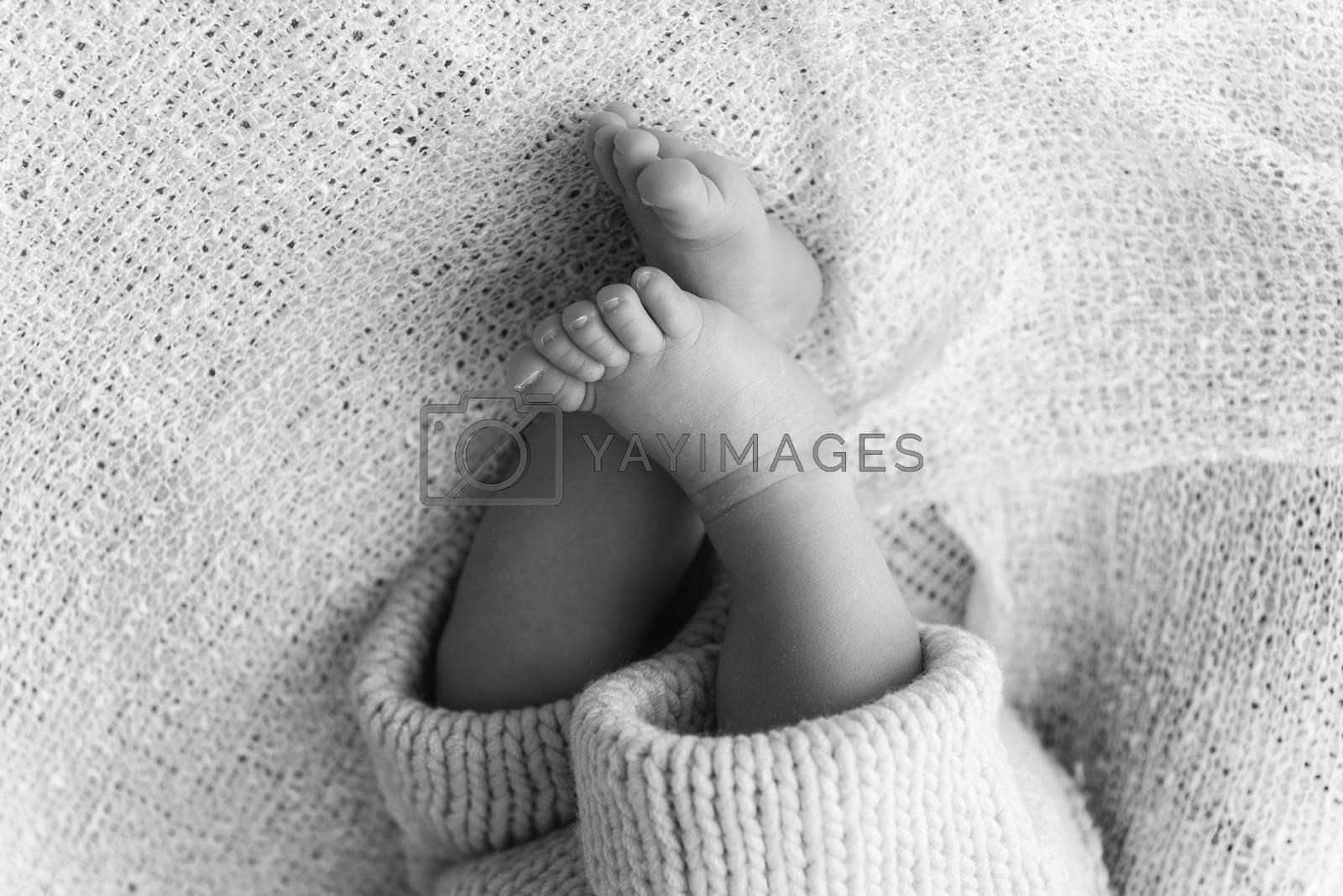 Closeup of a newborn baby feet by Marco Rubino