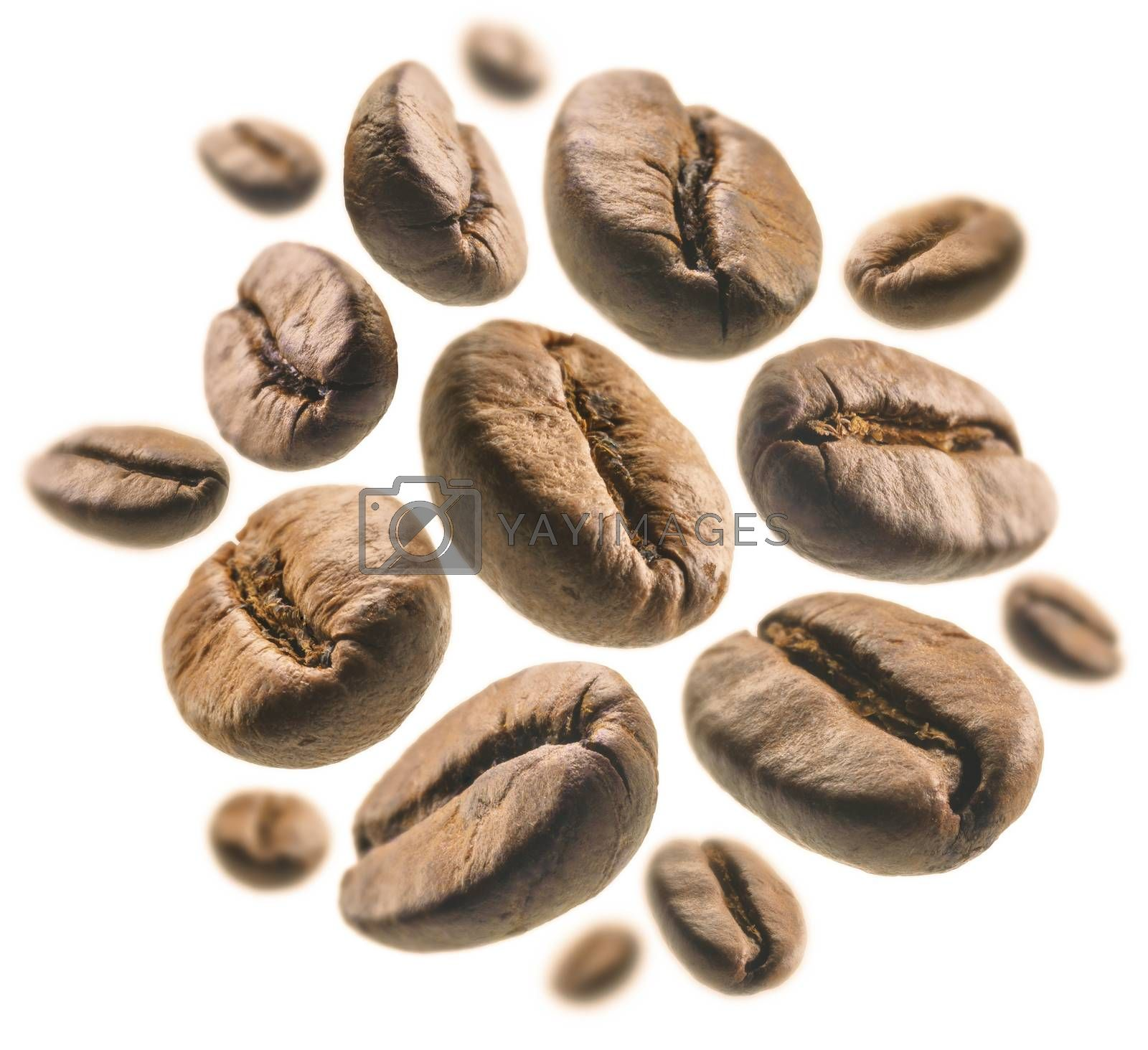 Coffee beans levitate on a white background.