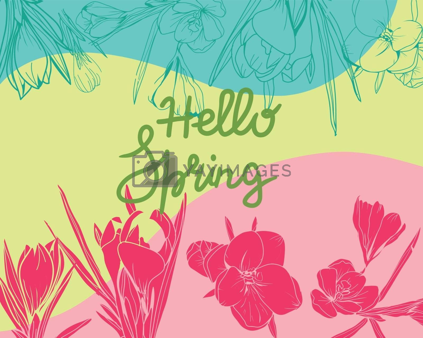 Hand-drawn crocus floral elements spring background. Hello Spring lettering. Hello spring vector concept design for banner, illustration, card, background.