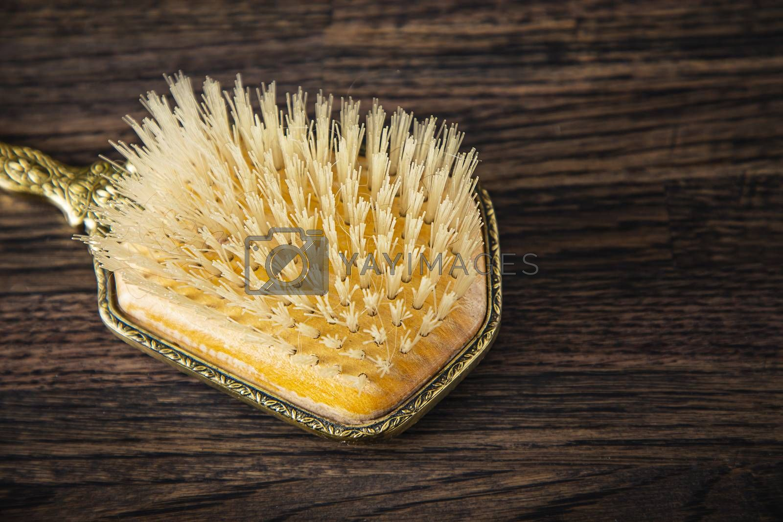 close up of a vintage brush head against a wood background
