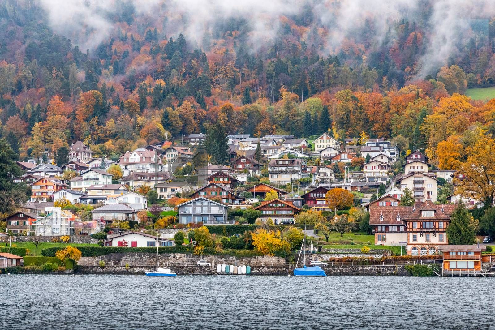Snow-capped mountain with colorful of tree in Thun lake, Interlaken, Switzerland. Early winter of November 2019, snow start to cover mountain area with cold temperature.