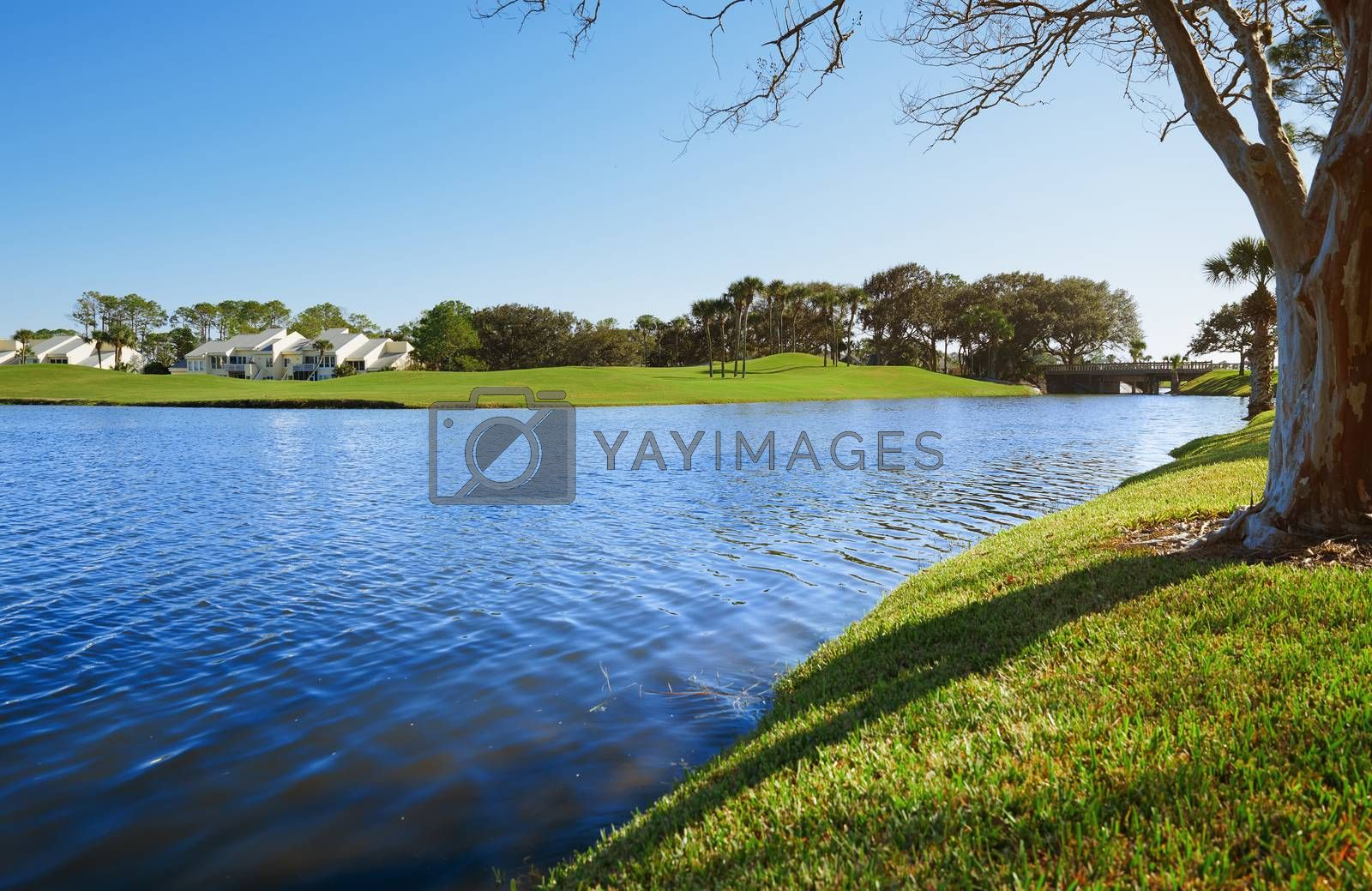 Lake in residential district, Florida, USA