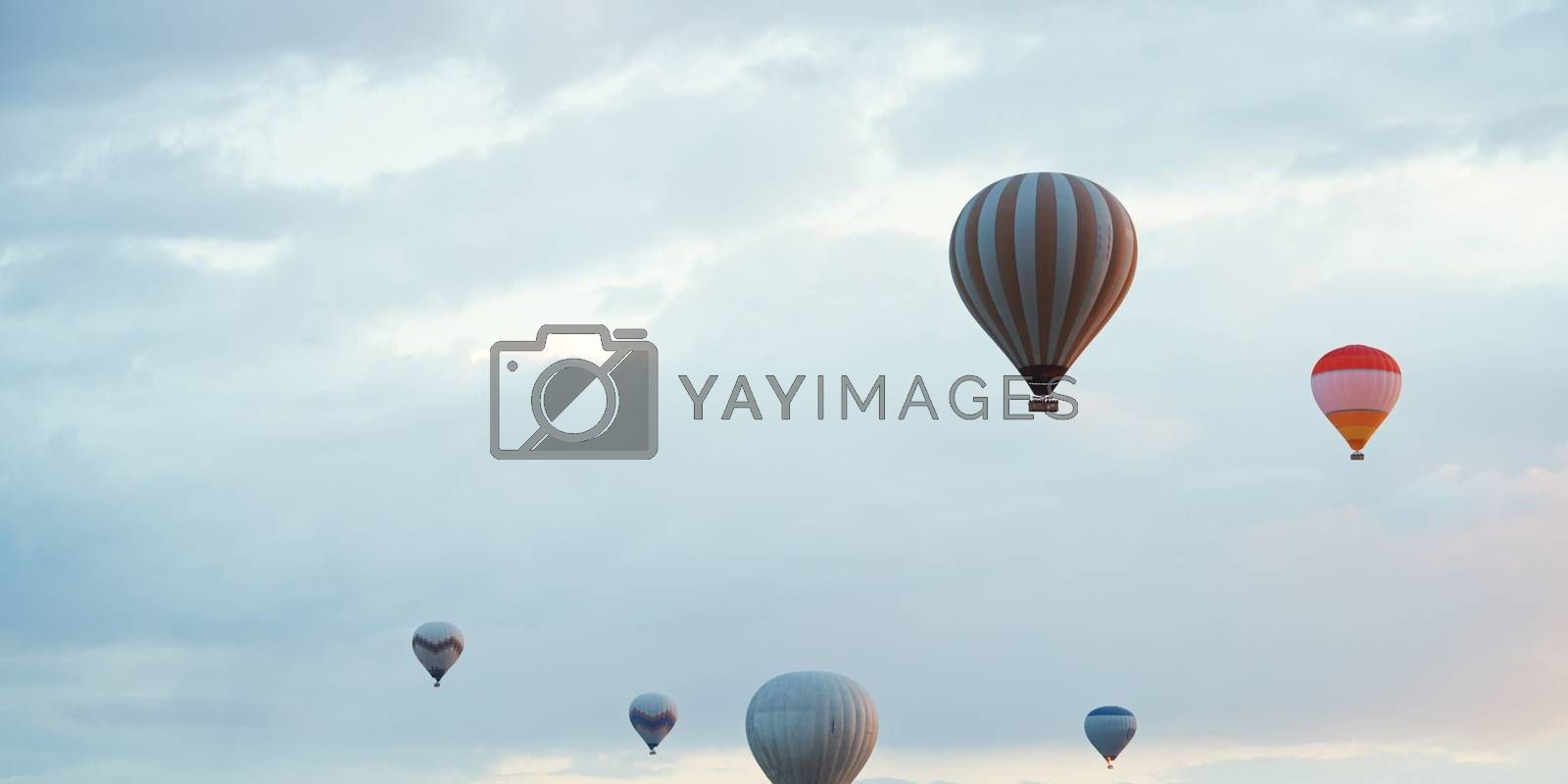 Group of hot air balloons flying in the sky