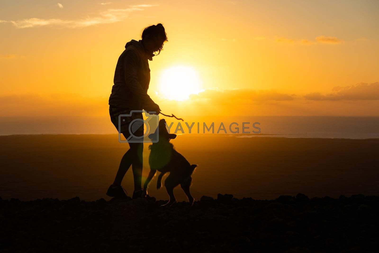 girl playing with her puppy dog, fuerteventura