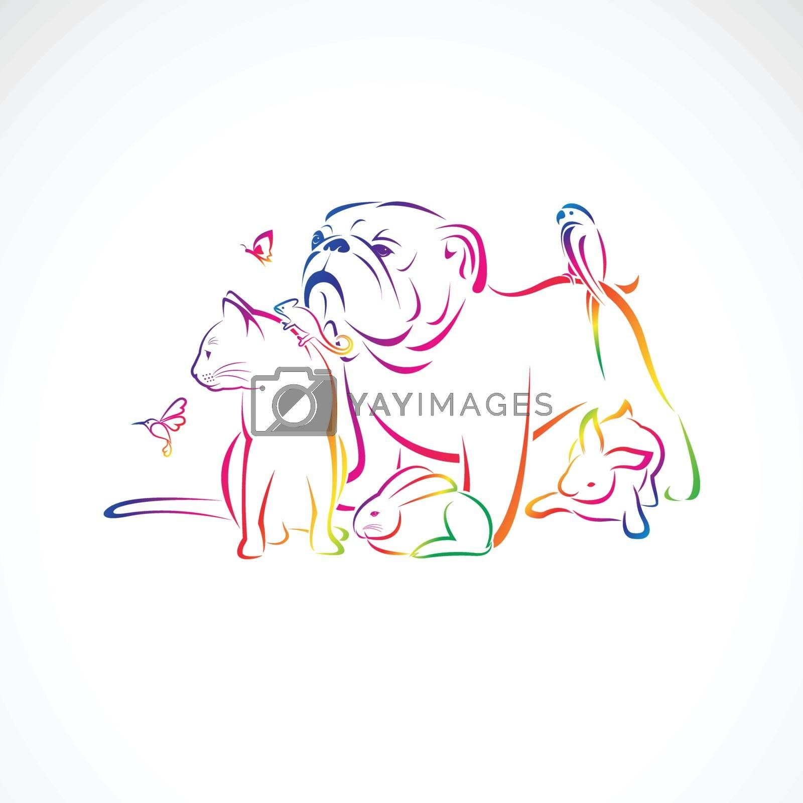 Vector group of pets - Dog, cat, bird, macaw, chameleon, rabbit, butterfly, Humming bird, isolated on white background., Pet logo or Icon, Vector pet for your design. Animal group.