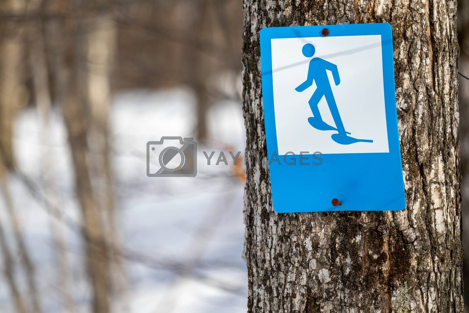 A blue-and-white sign features an illustration of a stick figure wearing snowshoes. This trail marker indicates a trail suitable for snowshoeing in the winter season.