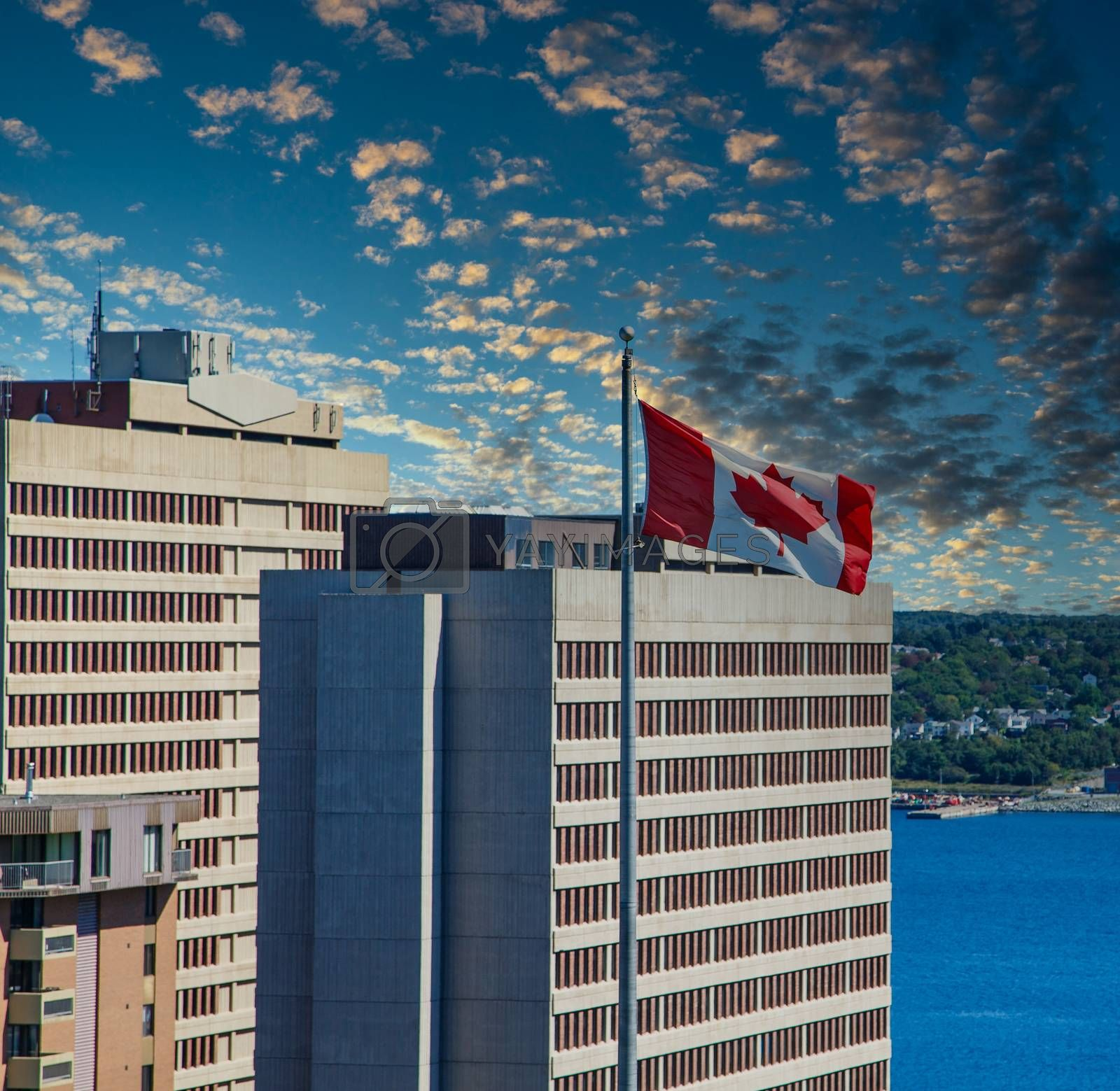 Canadian Flag by Office Buildings by dbvirago