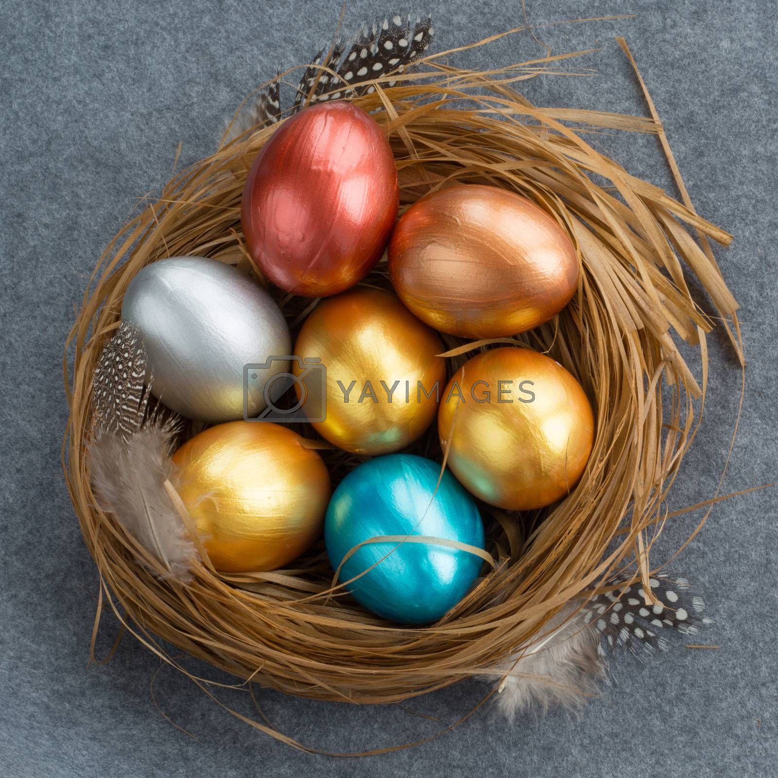 Happy Easter holiday greeting symbol stylish natural wooden grass nest with colorful quail eggs and feathers on gray fabric background