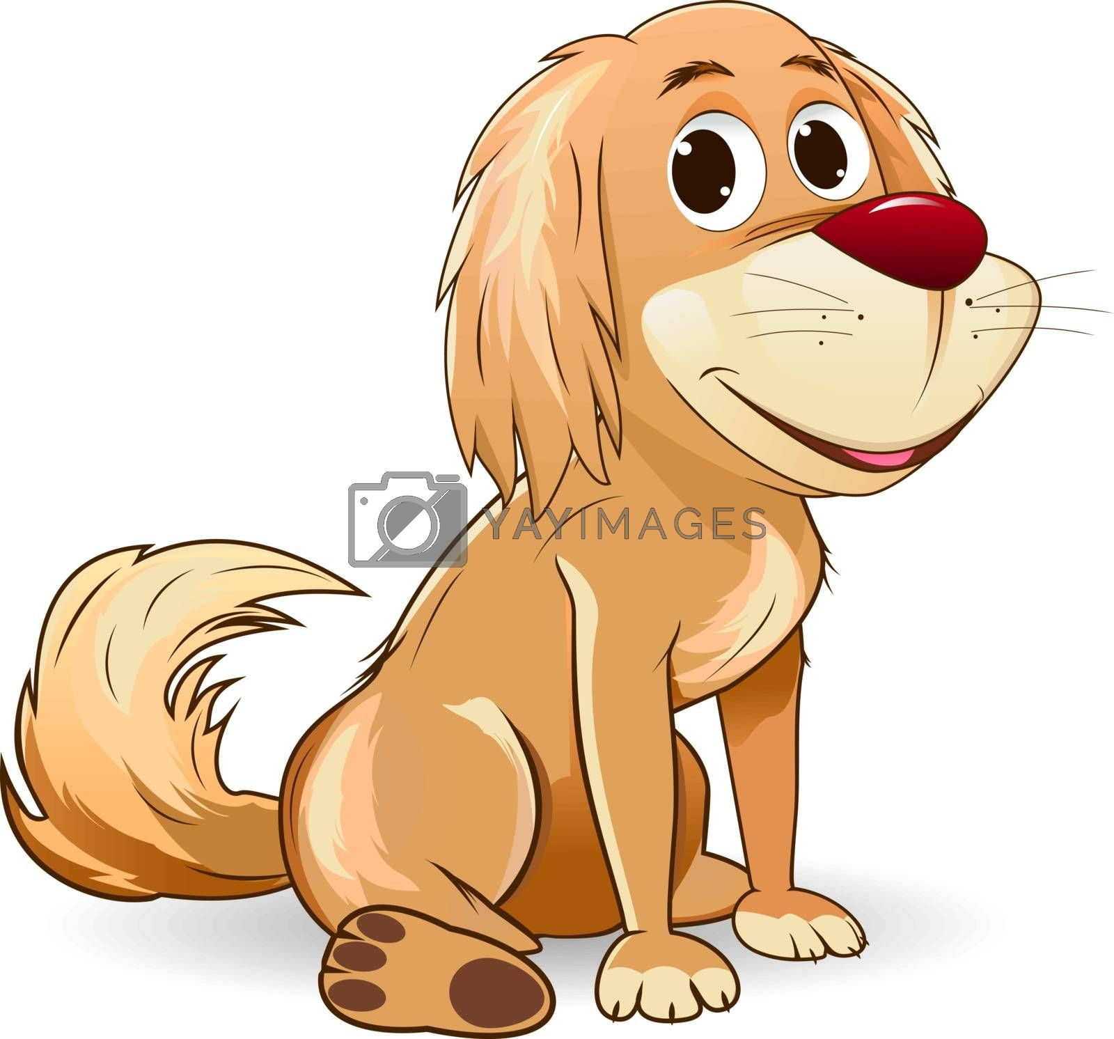 Sitting dog. Brown mongrel on a white background. Dog with a red nose.