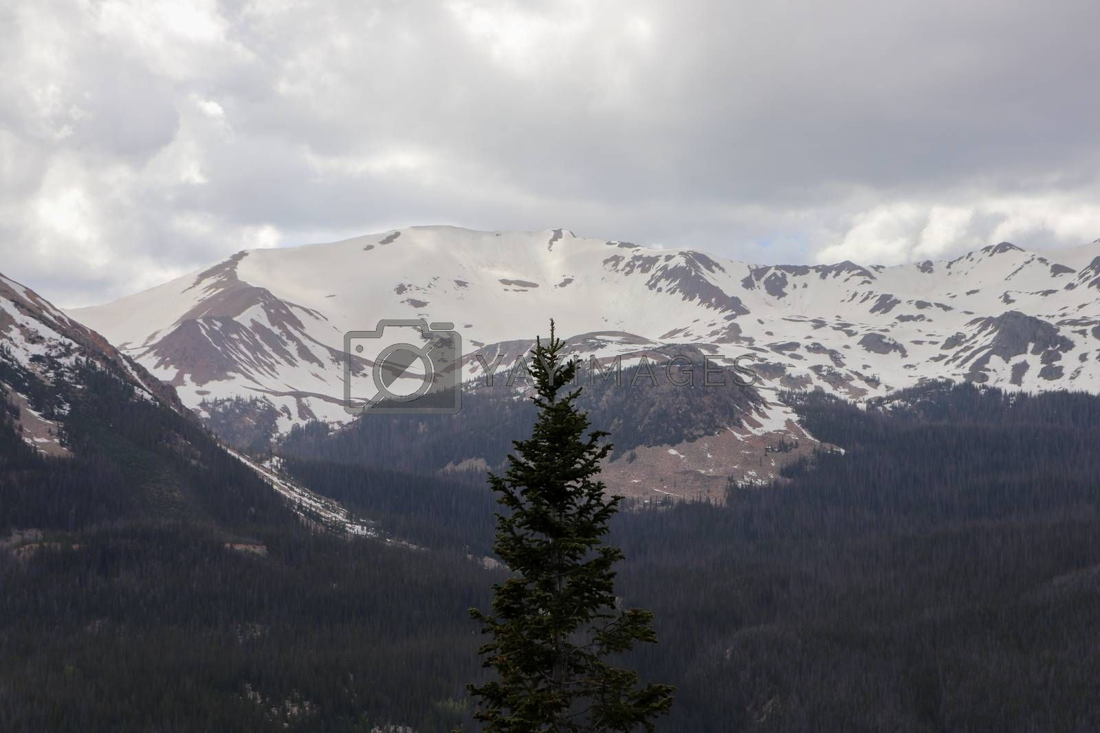 A view of the side of the Colorado mountain. High quality photo