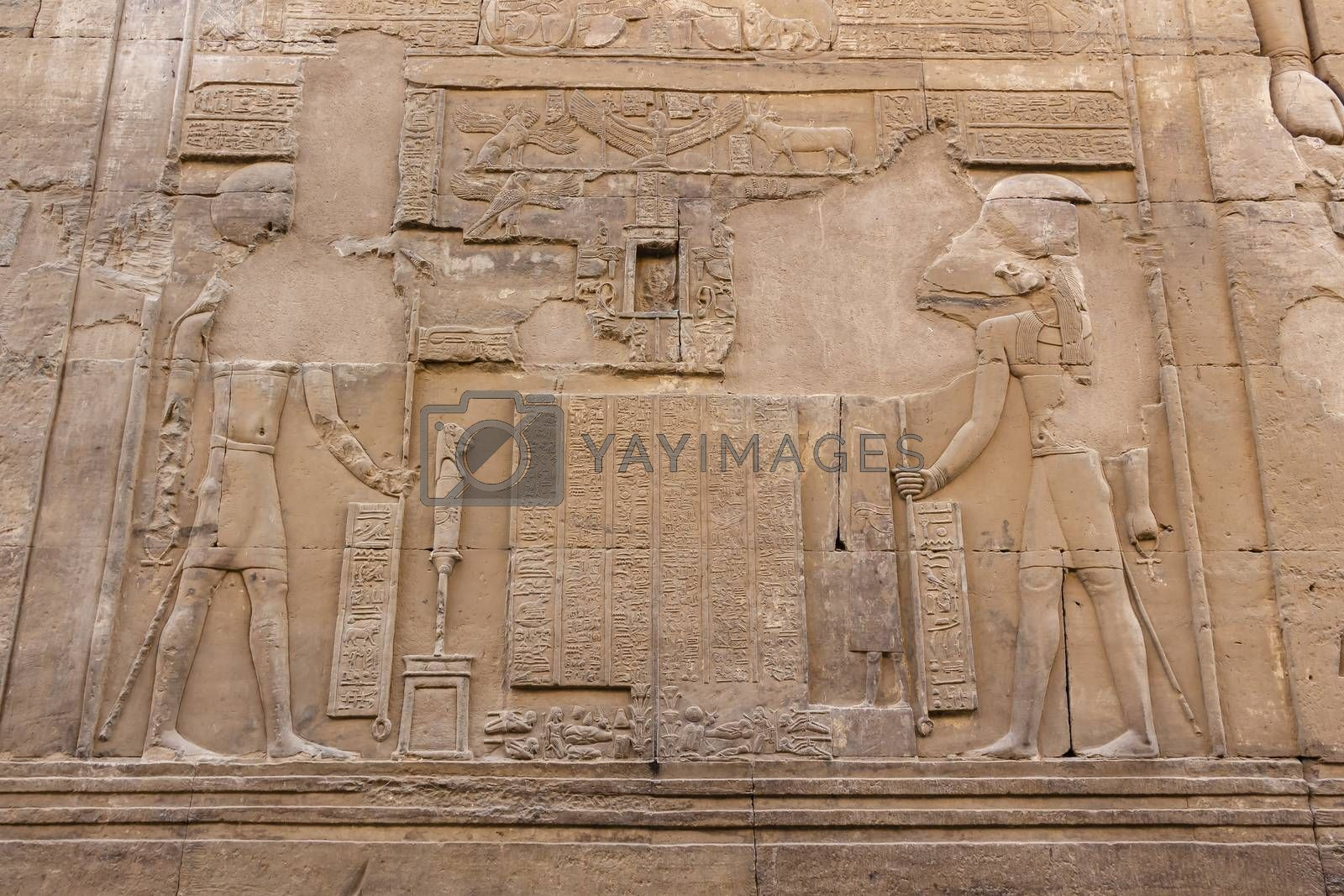 The Egyptian falcon god Horus and Sobek detail on the wall in the Temple of Kom Ombo, Aswan